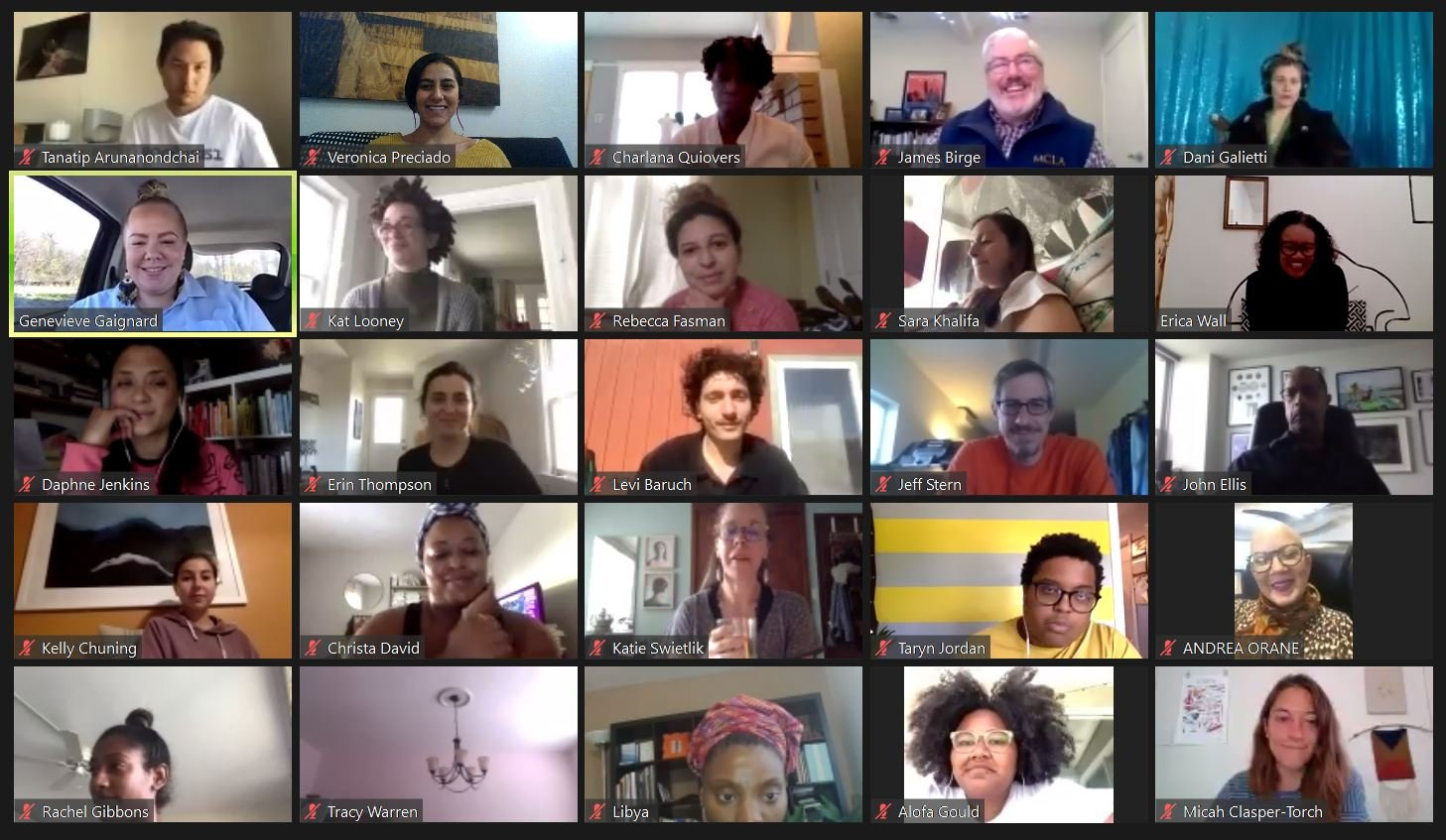 Screenshot of the video call from Genevieve's workshop. You can see a small thumbnail image of everyone on the call.