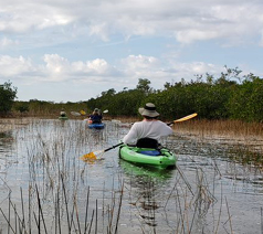 S Florida kayaking