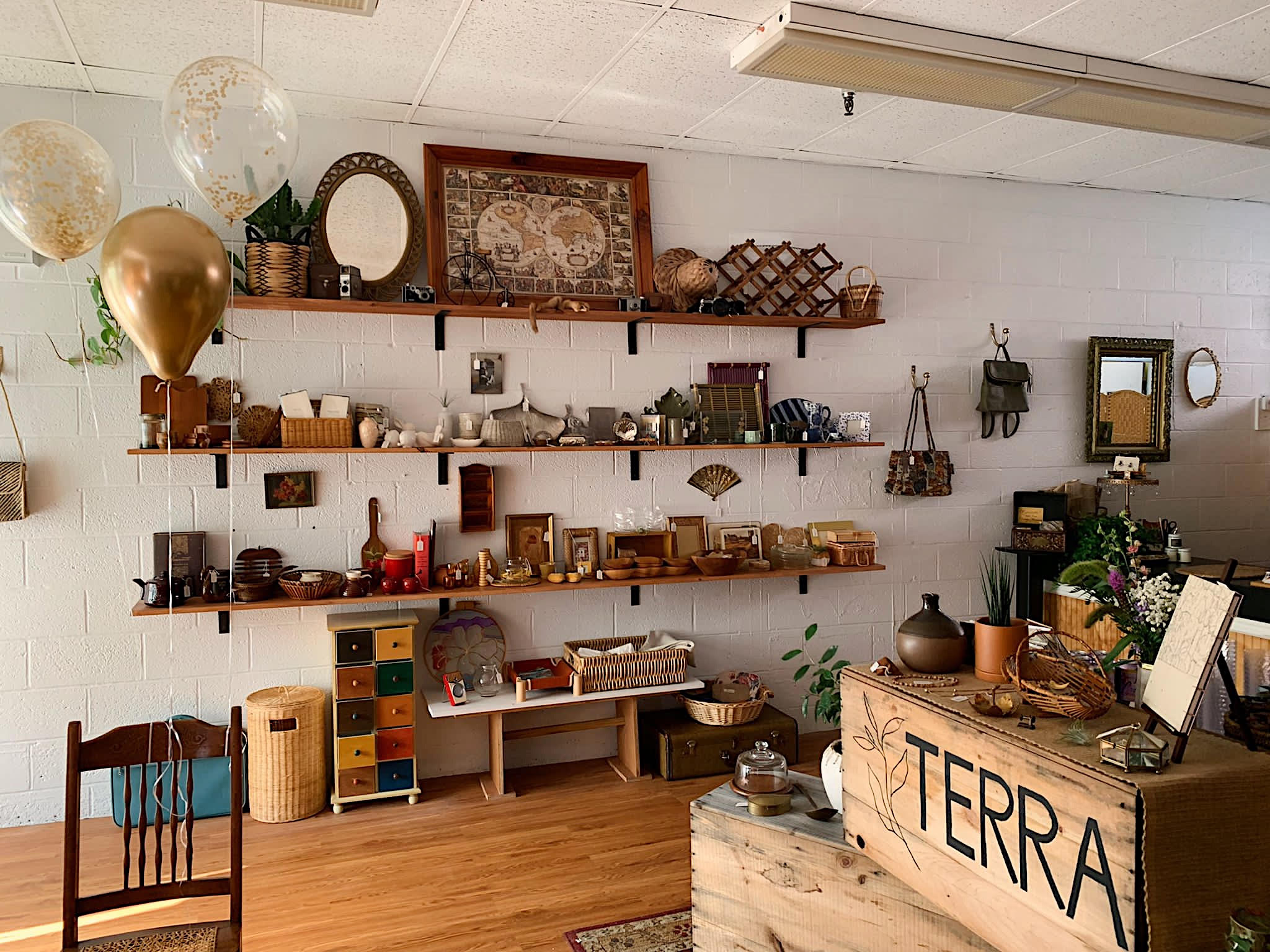 Samantha White '19, an art major at MCLA, is using her curation skills and artistic eye on a new project: Terra, a curated secondhand shop on Ashland Street in North Adams.