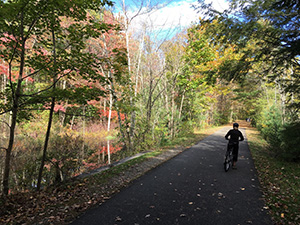 Biking on the Ashuwillticook trail